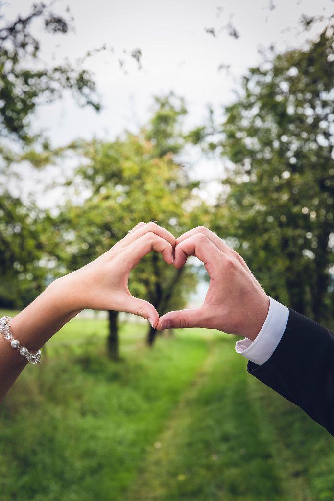 Freundschaftsbaum Hochzeit feiern